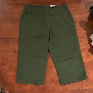 Medium capris by Time and Tru. Brand new!